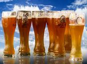 beer-oktoberfest-beer-glass-927666.jpg