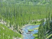 yellowstone-national-park-wyoming-77874.jpg