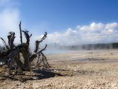yellowstone-national-park-wyoming-193820.jpg