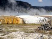 yellowstone-national-park-wyoming-215202.jpg