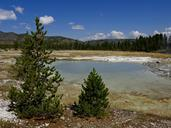 yellowstone-national-park-wyoming-215192.jpg