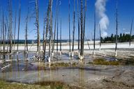yellowstone-national-park-wyoming-51655.jpg