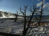 yellowstone-national-park-wyoming-644768.jpg